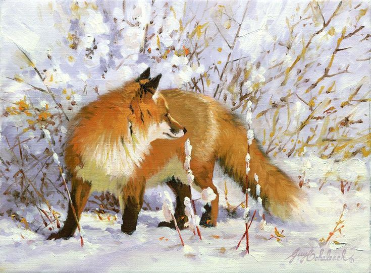 WOLVES, FOXES AND OTHER DOGS 18