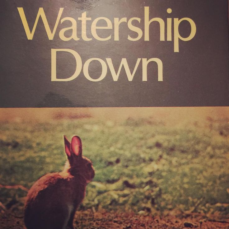 Starting Watership Down today. The film has been my favourite since I was small. This lovely copy was a birthday gift from my boyfriend a few years ago; it's going to be a 'read at home' book because I don't want to risk damaging it by carrying it about in my bag   #bookstagram #bibliophile #books #reading #RichardAdams #WatershipDown #gifts #birthdaygift
