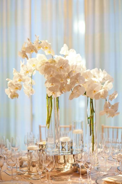 White phalaenopsis orchid centerpiece with tall thin