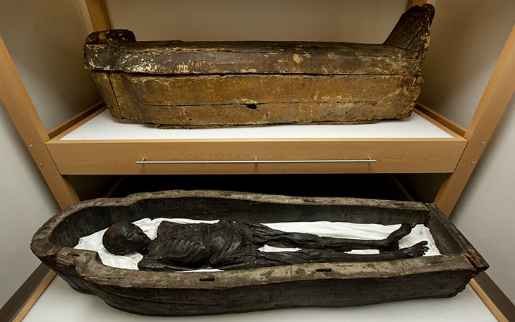 Djedmutiwesankh, one of two mummies and coffins in the Tulane University museum.