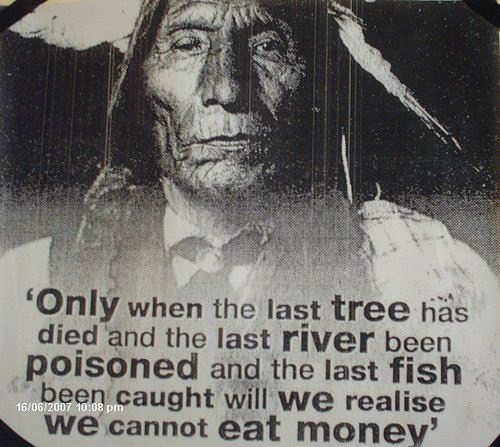 native american quoteThoughts, Native American Quotes, Inspiration, Self Sustainable, Mothers Earth, Eating Money, True Words, Money Quotes, The Roots