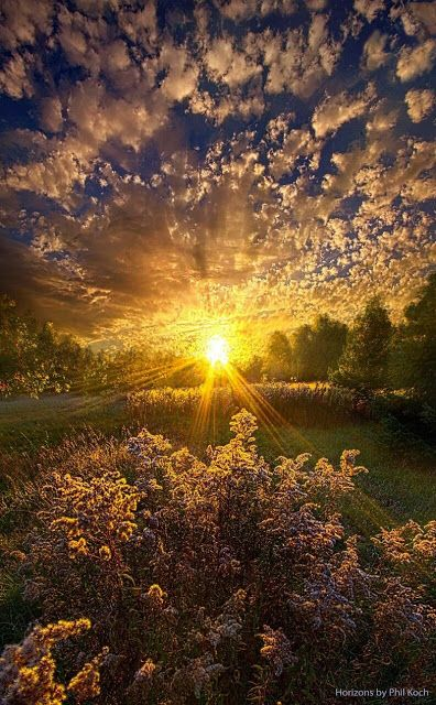 Summer Sunset ~ Marvelous Nature