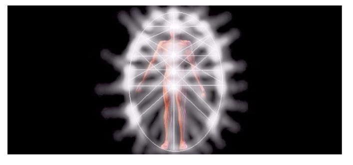 Alimentazione e vibrazione   C'è energia bioelettrica in ogni cellula del tuo corpo. Ogni organo sano ha una frequenza sua particolare che in presenza di tossine si abbassa proporzionalmente all'aumento del livello di intossicazione delle sue cellule...