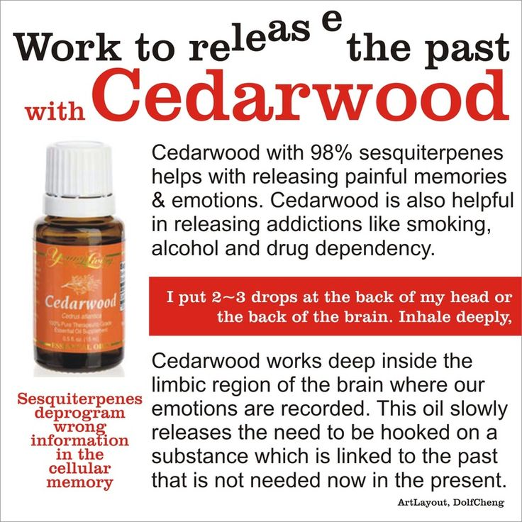 Release the Past with Young Living Cedarwood Essential Oil. Dolf Cheng Young Living # 846048 dolfcheng@yahoo.com
