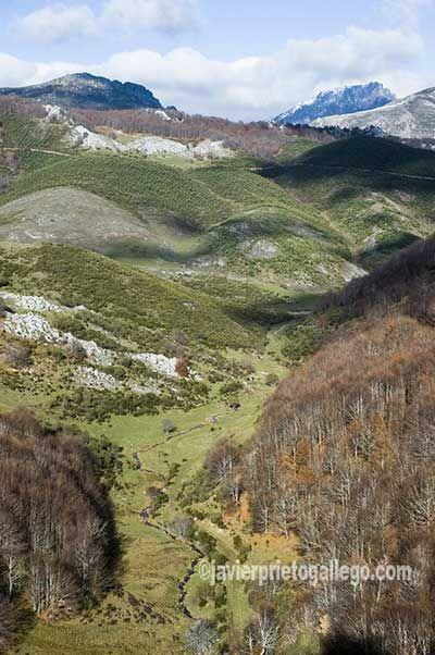 REVCYL.ESCAPADAS. Javier Prieto Gallego, Tejos y torreones, a pie por la senda de La Cervatina, en el valle.www,siempredepaso.es