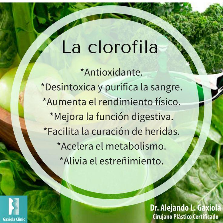 Hoy es miércoles de #información acerca de los alimentos.  Conoce los beneficios de: la clorofila.