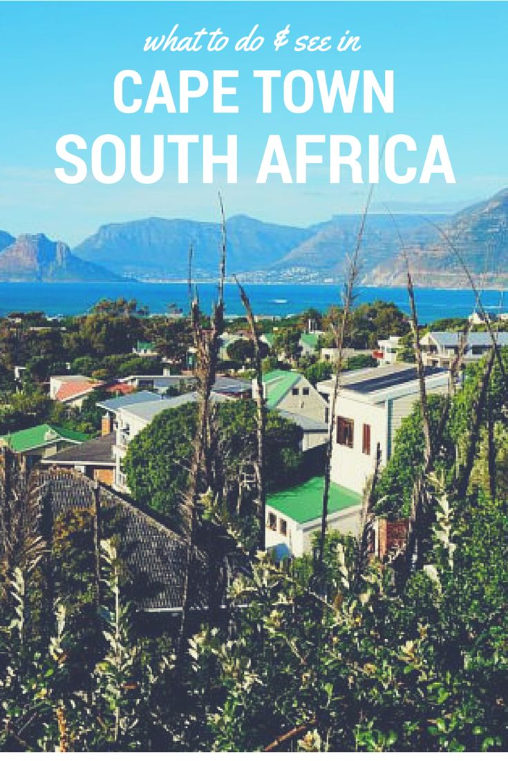 What to Do & See in Cape Town, South Africa. Click the pin to read the post from www.flirtingwiththeglobe.com #SouthAfrica #CapeTown