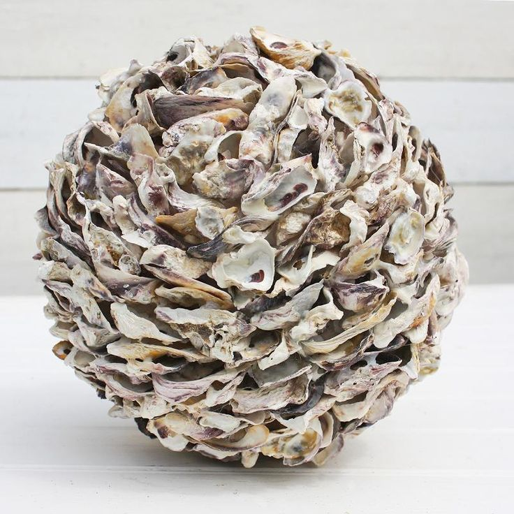 Oyster Shell Ball | Decorative Ball | Decorative Spheres - buy the sea