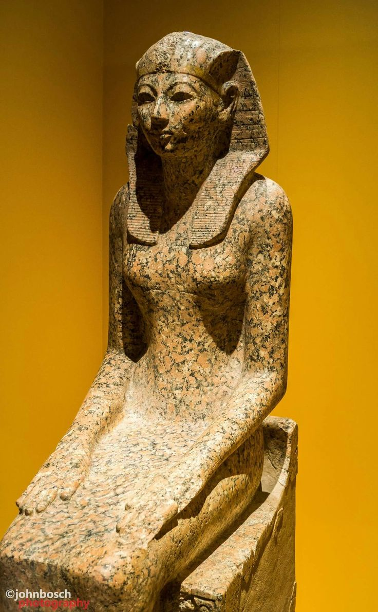 a history of hatshepsut a pharaoh of ancient egypt Hatshepsut was the primary wife of thutmose ii, the boy's father hatshepsut reigned far longer than any other woman in an egyptian dynasty she is also referred to as one of the first great women in history it was very unusual for a female to become a pharaoh in ancient egypt during the dynastic period.