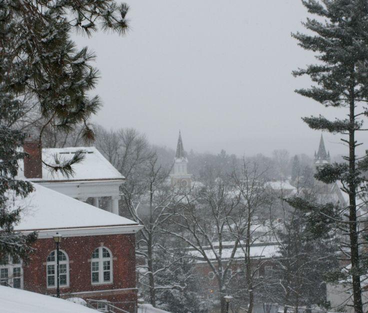 Beautiful winter shot of Denison University's tree canopy. Trees can add beauty all year long!   Via Denison University, photo credit James Hale