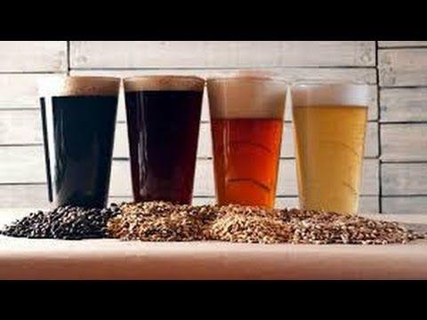 Curso de elaboracion de Cerveza Artesanal, realizado por la Revista Mash.