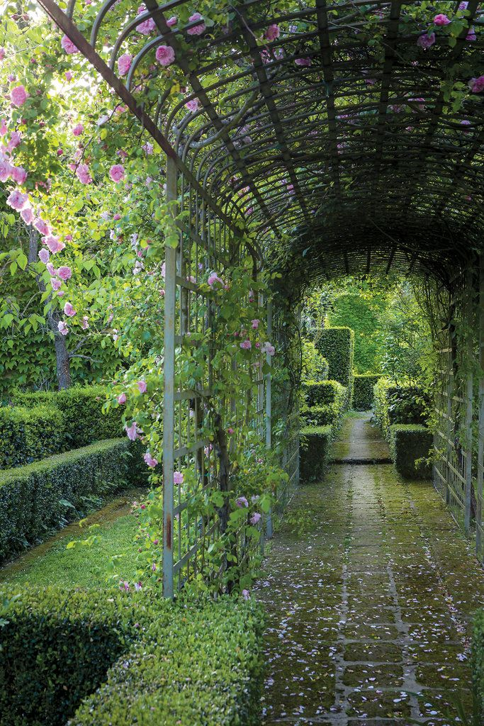 Federico Forquet pergola with climbing roses, photo by Ricardo Labougle