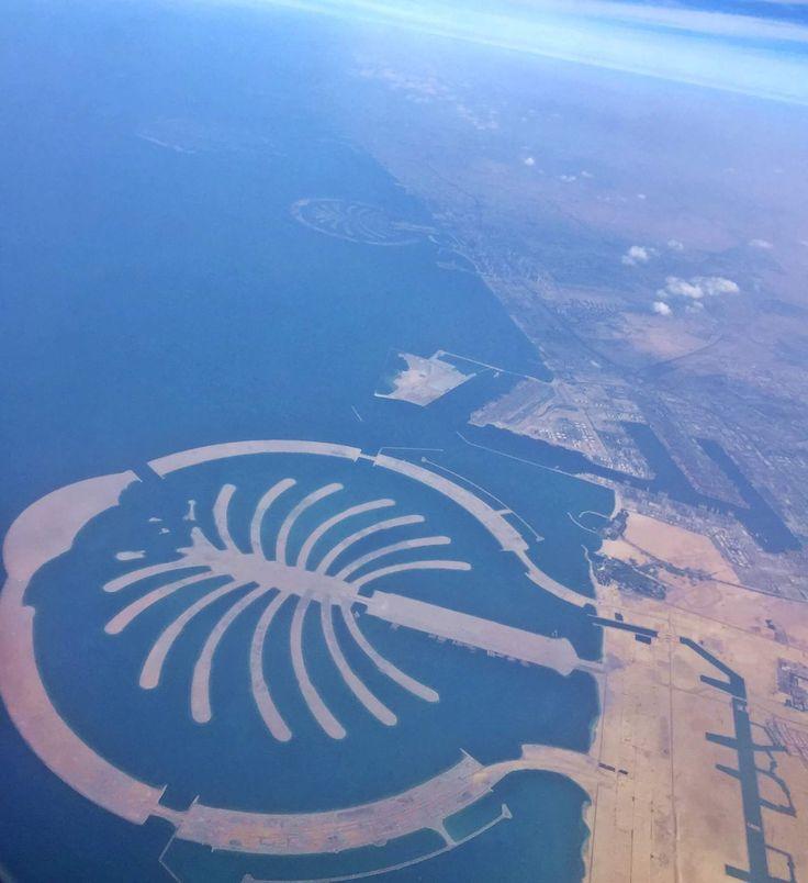 My favorite thing to do in Dubai is skydiving  أفضل نشاط قمت به في دبي هو القفز بالمظلة فوق النخلة