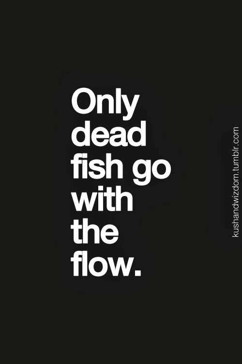 Don't be a dead fish