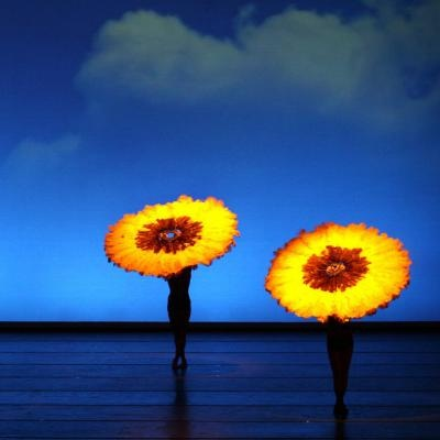 White Bird Productions: Momix