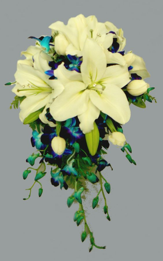 White oriental lilies with diamantes in centre, dyed blue dendrobium orchids & white tulips create this stunning teardrop