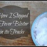 Fever blister final