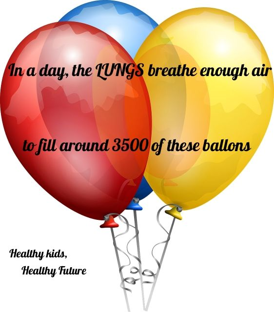 How Many Balloons??? The Lungs