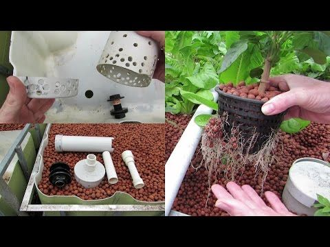 aquaponics update and how to build a bell siphon. - YouTube