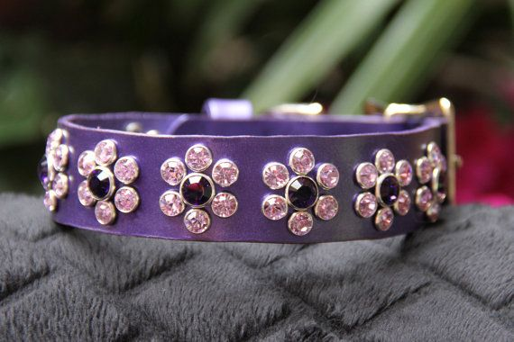 Purple Pearl Leather Dog Collar with Violet by JustForBella, $109.00