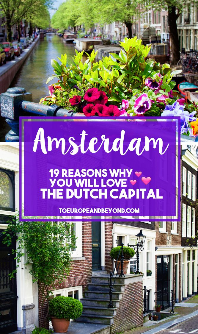 My 19 Favourite Photos of Amsterdam
