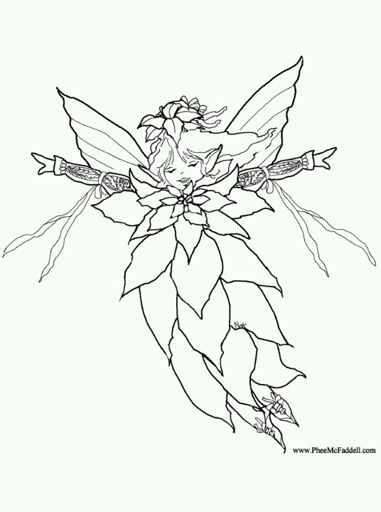 Poinsettia Leafs Coloring Pages