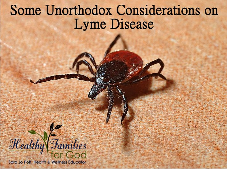 Some Unorthodox Considerations on Lyme Disease Lyme