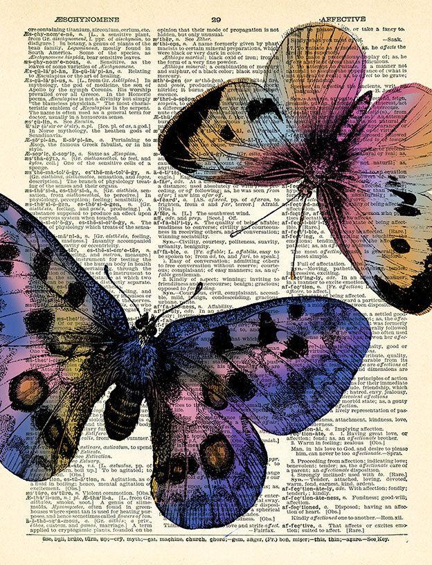 Бабочки Бабочки Печать старинные книги по PrintsVariete