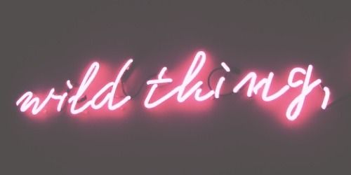 neon ☠ ✦ credit @taymblr if using ✧ like if saving ✦ give me credit or i will kill your mom ✧ dont claim this as yours