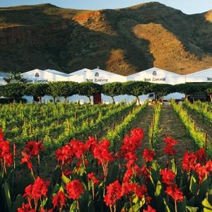 Van Loveren wine estate (South Africa)