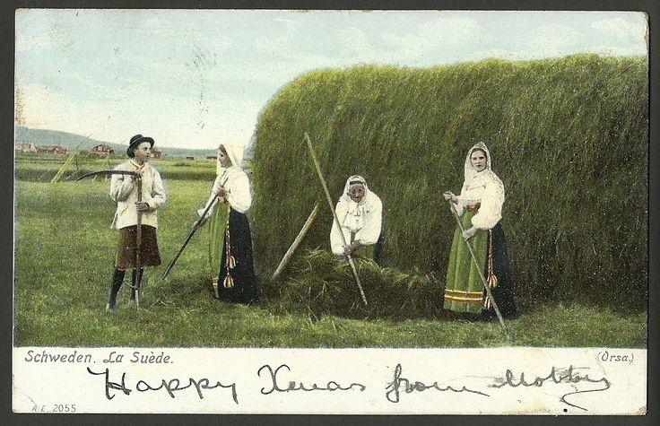 """Schweden La Suede"" Costume Sweden Posted 1904 Ref 36 336 | eBay"