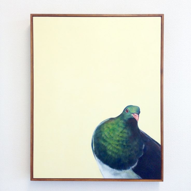 Woodpigeon - oil on Board by Charles Hannah. LOVE the colours! New Zealand Art.