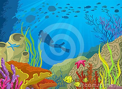 Cartoon Colored Coral Reef And Diver For Shari