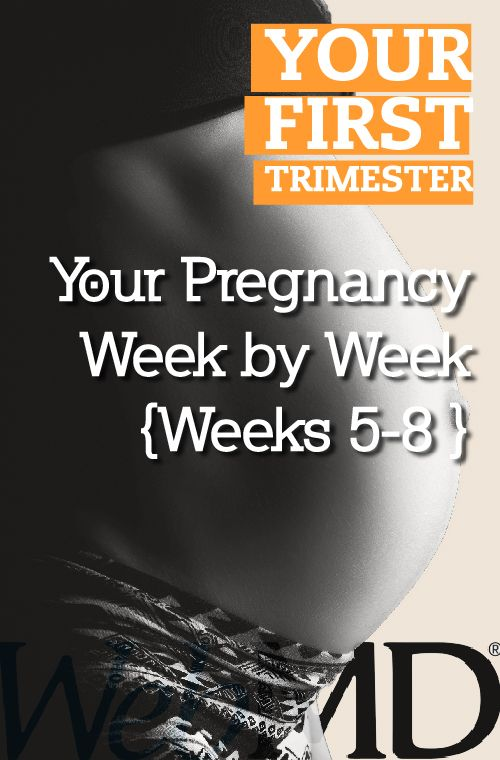 how to know which week of pregnancy i am in