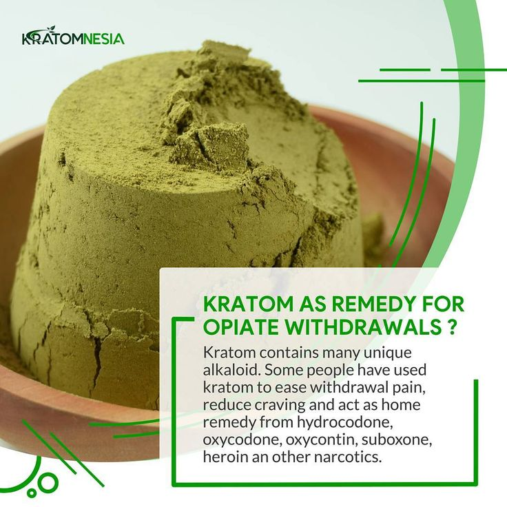 Kratomnesia offers the highest quality kratom powder in Canada. We gives you special offer in this month so hurry up and buy Kratom Powders & Kratom Capsules with the guarantee. Order now.  #Buykratom  #brownveinonline #Greenkratom