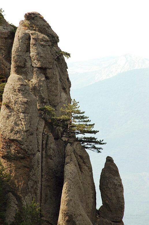 Долина Привидений, урочище Демерджи, г. Алушта, КРЫМ
