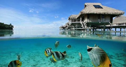 Hilton overwater bungalows on Bora Bora. This is 2 views!