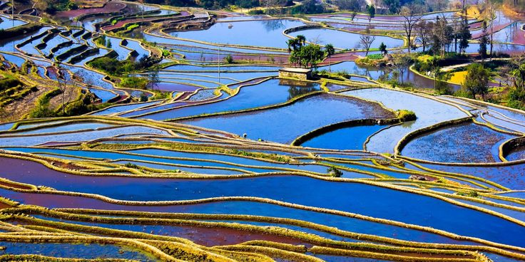 Zhang Ning is technically an amateur photographer, but that doesn't mean her images can't physically make your brain spin. The 51-year-old Chinese artist, who hails from Dongguan, Guangdong, snapped devastatingly beautiful photos of rice terraces during her travels throughout her native country.