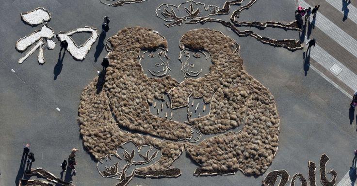 20160103 - Painel feito com plantas na cidade de Hitachinaka, no Japão, forma a imagem de dois macacos, animal do ano, segundo o calendário chinês. PICTURE: Toshifumi Kitamura/AFP