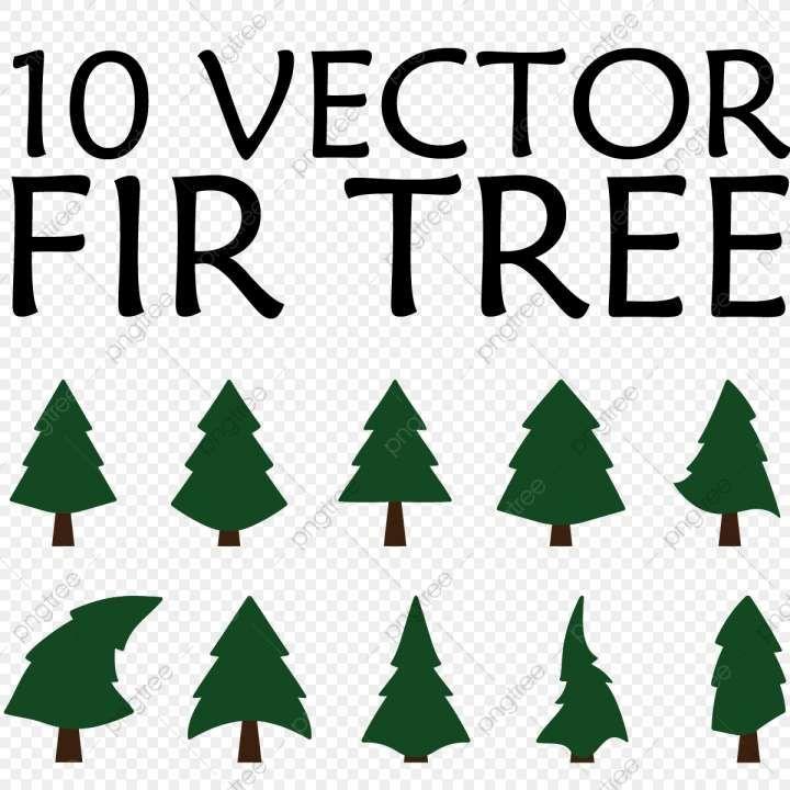 10 Fir Tree Pattern Png Tree Patterns Fir Tree Fir Christmas Tree