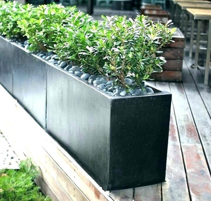 Plant Box Planter Box Ideas Designs Modern Tall Boxes Home Interior Company In Window Shade Planter Box Balcony P Outdoor Planters Concrete Garden Outdoor Pots