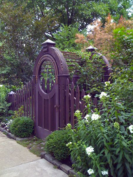 The deep eggplant color looks perfectly at home in the garden, making the green hues around it sing. The fuzzy shrub in the background is Cotinus coggygria, commonly known as Purple Smoke Bush, whose leaves likely provided the inspiration for the gate's color.