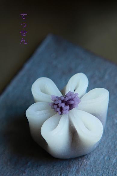 和菓子/ wagashi
