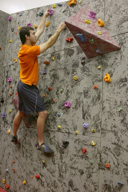 Student on climbing wall at Sutton Bonington Campus Sports Hall