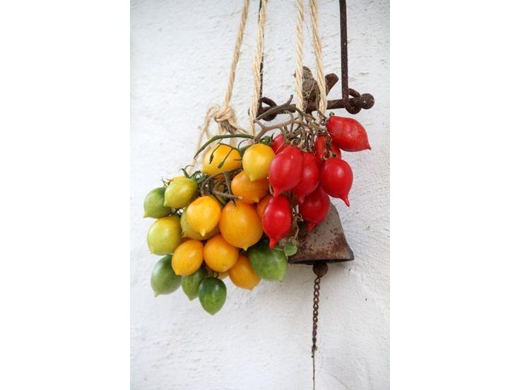 Piennolo-tomat - ekologiska fröer - Orto by Gourmetgarage