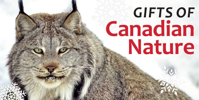 Help protect Canada's natural beauty. This holiday, Give the gift of nature. #GiveNature
