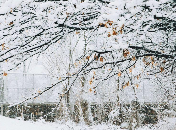 winterwonderland vsco vscocam Winter wonderland