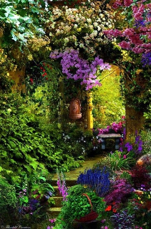 flower garden gardens - I would like to have beautiful colours in my garden like this.