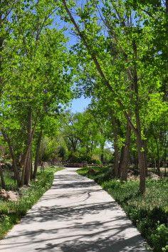 The Greenway and Nature Center of Pueblo, Colorado displaying unique semi-arid grasslands.