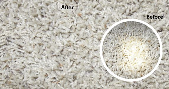How to Remove Bleach Stains From a Carpet